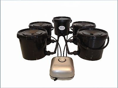 Deep Water Culture 4 Pot Bubble Tubz Hydroponic System Dwc Not Iws, Alien, Rdwc