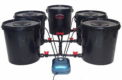 4 Pot Deep Water Culture Dwc Hydroponics Systems Not Iws Alien Or Rdwc