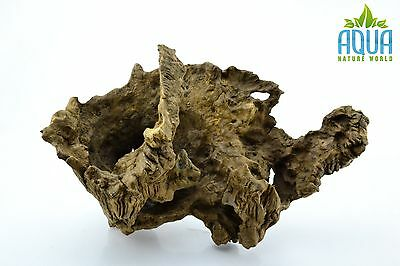 (A-5569)  Oak Bogwood Aquarium Wood (Red moor) Size L