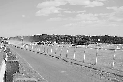 Newcastle Races - two photographs