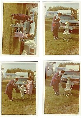 Vintage Circus Color Photograph - Clowns with Dog- Set of 4