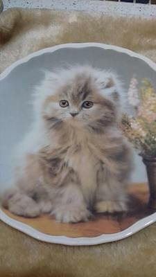 Collectors plates - Fluffy - Royal Albert