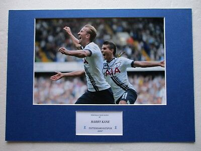 Tottenham Hotspur - Spurs Harry Kane Genuine Hand Signed A3 Photo Mount Display