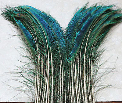 50pcs/lot sword peacock feather (right and left) 8-12 inch Y0099