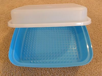 Tupperware ~ Large Season Serve MARINADE CONTAINER ~ NEW ~ Salt Water Taffy Blue