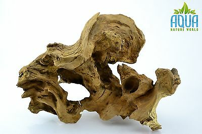 (A-5223)  Oak Bogwood Aquarium Wood (Red moor) Size L