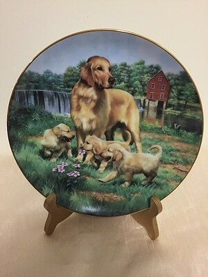 Golden Retrievers Classic Sporting Dogs Collection 1989 23K Gold Trim - Hamilton
