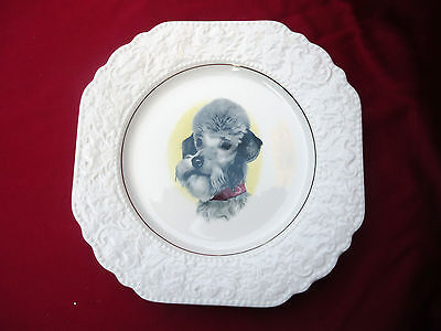 Lovely Vintage Dog Lovers Lord Nelson Pottery England Decorator Plate *c1975