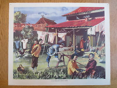 1950'S VINTAGE CLASSROOM POSTER Silk Producers Home CHINA Macmillans Geography
