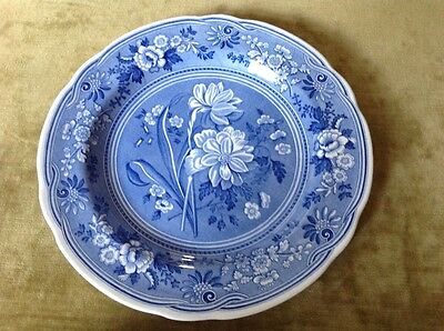 """Spode Blue Room Collection """"Botanical"""" Plate"""