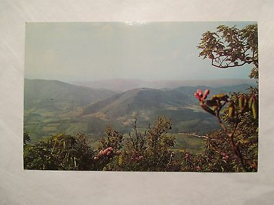 Mt Jefferson State Park North Carolina NC Postcard