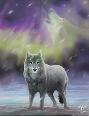 "Aurora Canvas Plaque by Anne Stokes Wolf 10"" x 7.5"""