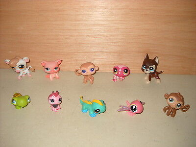 LPS 10 Littlest Pet Shop Animal Figures Lot (G) By Hasbro