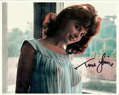 TINA LOUISE signed SHEER NEGLIGEE YOUNG BUSTY SEXY SEDUCTIVE 8x10 closeup w/ COA