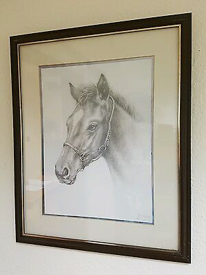 vintage pencil drawing sketch of a horse signed by artist, framed