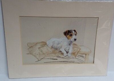 Wire Haired Fox Terrier Puppy, Print, Card Framed, Unknown Artist