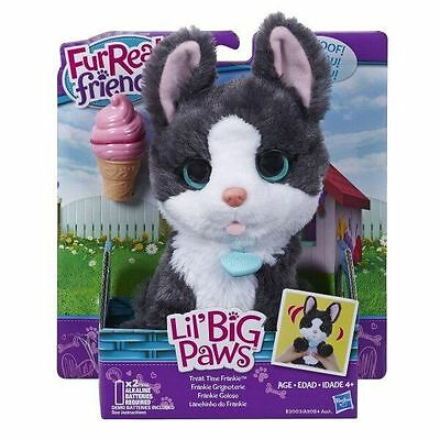 Fur Real Lil Big Paws (Assorted) - Kids Toy - Presents and Gifts for Children