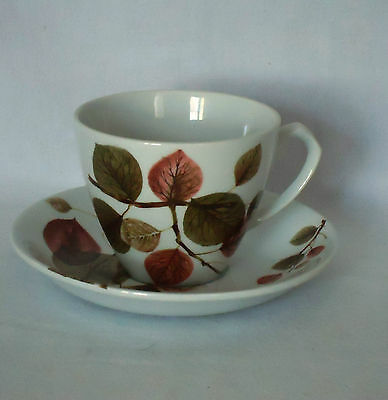 Vintage Alfred Meakin England Cup & Saucer Duo *Longwood Pattern *Autumn Leaves
