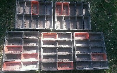 50 Seedling punnets in 5 trays