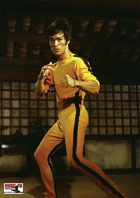 Bruce Lee: raw series -The Game of Death plus Tao of Promotion- Unfolded Posters