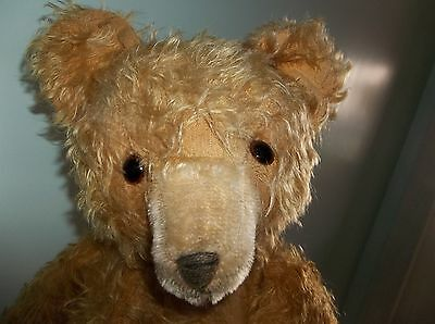 """Large Antique Steiff? Teddy Bear 22"""" Long Gold Blonde Mohair Hump Back 5 Claws"""