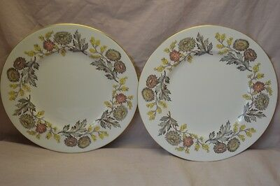 "Wedgwood Lichfield Bone 10 3/4"" Dinner Plates Set of 2  Gold Trim W4156"