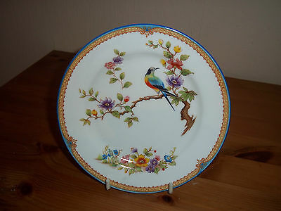 """Antique Aynsley 6"""" bone china side plate """"Bird of paradise"""" good used condition"""