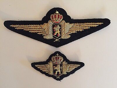 Raf Pilot Bullion Cloth Embroidered Badges/ Patches