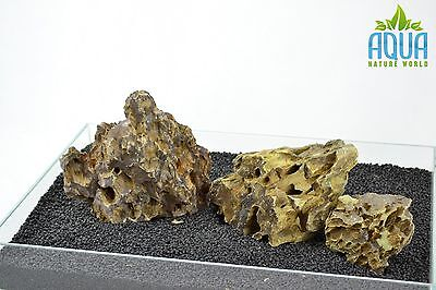 (A-5384)  ADA Dragon Stone Aquascaping Aquarium Iwagumi Style