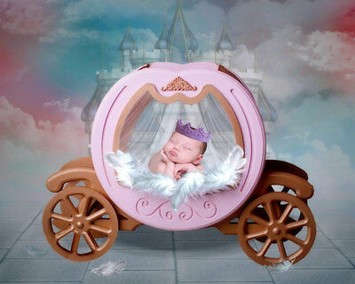 Baby Photo Shoot 20 Digital Backdrops
