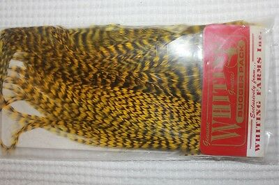 Whiting Grizzly Yellow Bugger Pack Fly Tying Fishing Materials