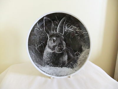 Rabbit Candle Smoked Plate-Hand Illustrated - 20cm