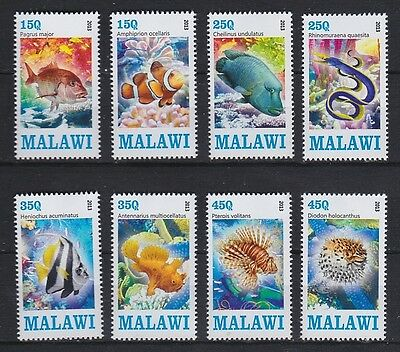 Série de timbres neufs ** MNH - Malawi 2013 - Poissons exotiques Fishes