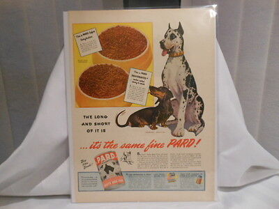 Pard Dehydrated Swift's Dog Food 11X14 Advertising Print Ad