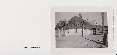 Old Poland Photo WWII Poor House in Sedlice. Siedlce. Biedny dom. Wojna