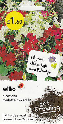 NICOTIANA - Roulette Mixed F2 - Wilko Flowers - Average 250 Seeds