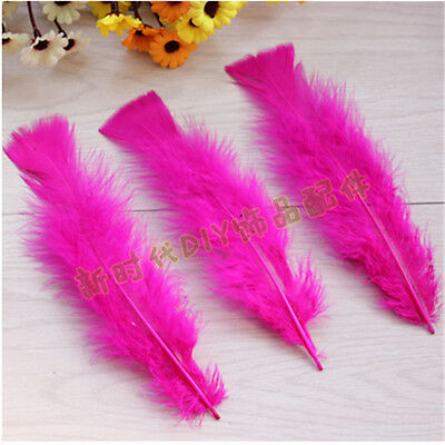 Free shipping! 10 PCS 8-12cm/3-5inches Rose Flat head goose feathers