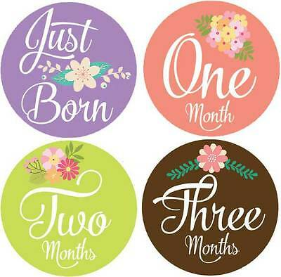 M2 Belly Doodles 16 baby month milestone stickers for girls flowers