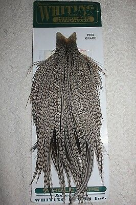 Whiting Grizzly Variant Rooster Cape, Fly Fishing Materials