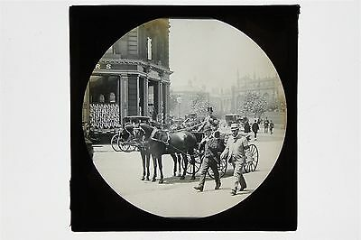 Horse & Carriage In Sheffield & Cole Brothers Shop c1901 - Glass Lantern Slide