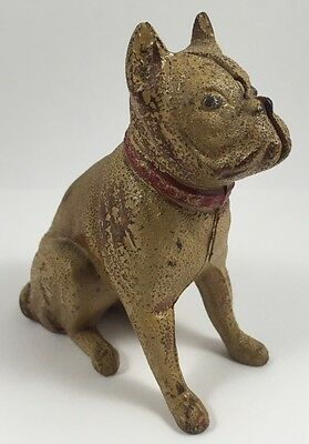 Antique Early 1900s Hubley Boxer Dog Cast Iron Bank AC Williams