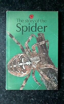 Ladybird book - The Story of the Spider