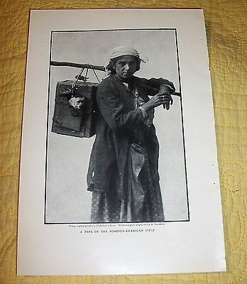 "Antique 1909 Nicholsons' Sons Book Plate ""a Type Of The Foreign-American Gipsy"""