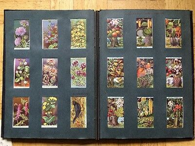 Vintage Cigarette cards in an Album  Wills. John Player, Sinclair. Misc Original
