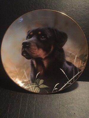 The Danbury Mint Spirit of Loyalty Rottweiler Plate by John Silver
