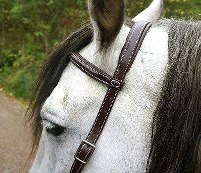 F.R.A. Flandy Side Pull Bitless Bridle, natural horsemanship