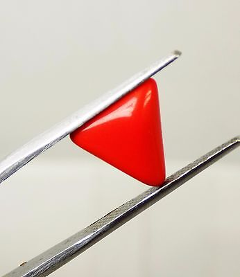 2.80 Cts Excellent Quality Beautiful Triangle Red Coral Loose Gemstone RR160@