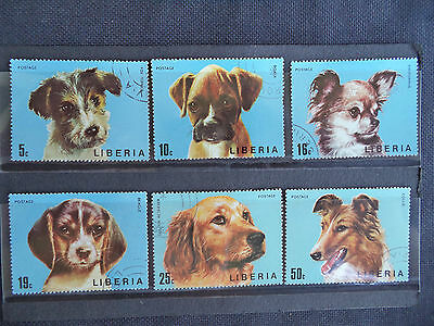Dogs - 1974