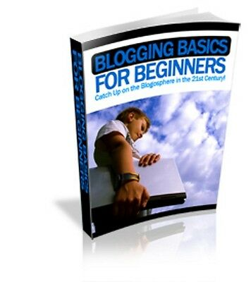 BLOGGING FOR BEGINNERS Free Shipping ebook  PDF