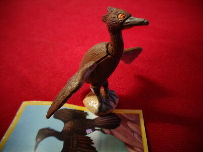 Yowies Series 9 FORGOTTEN FRIENDS B * # 22, SPECTACLED CORMORANT + PAPERS